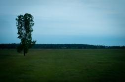 Ah Ontario countryside...
